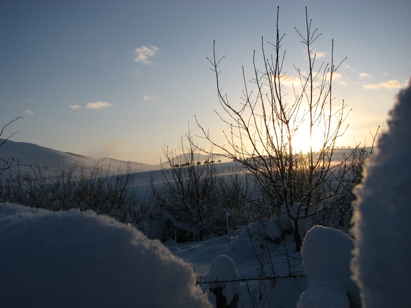 Jan 10, sunset snow 3