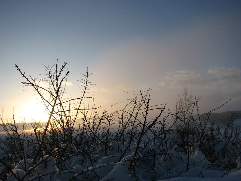 Jan 10, sunset snow 5
