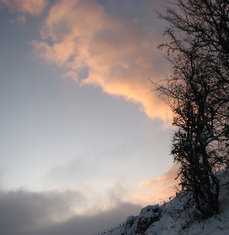 Jan 10, sunset snow 7