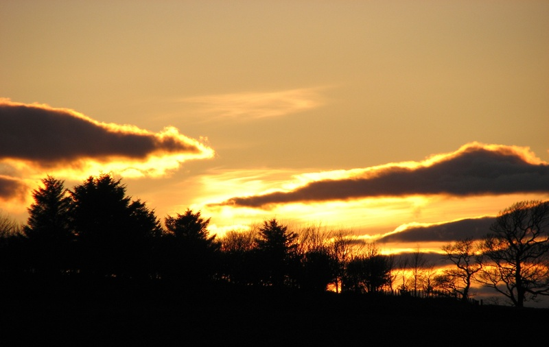 March sunset 7